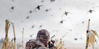 Goose Hunting Purpose